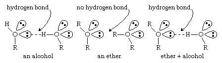 مدل های پیوند هیدروژنی در اتر ها