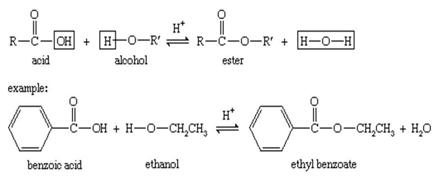 معادله واکنش تولید استر