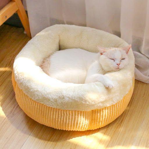 سیلیکاژل برای بستر گربه