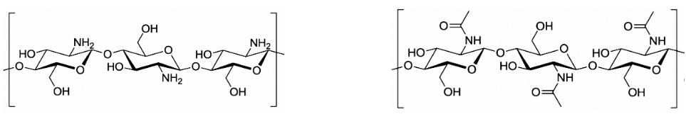 ساختار شیمیایی کیتوسان و کیتین