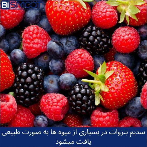 سدیم بنزوات در میوه جات و غذا ها به خصوص در رب گوجه فرنگی